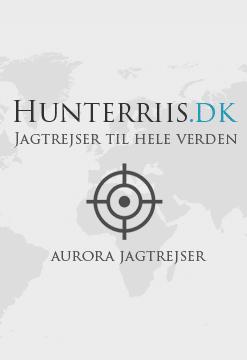 Hunterriis